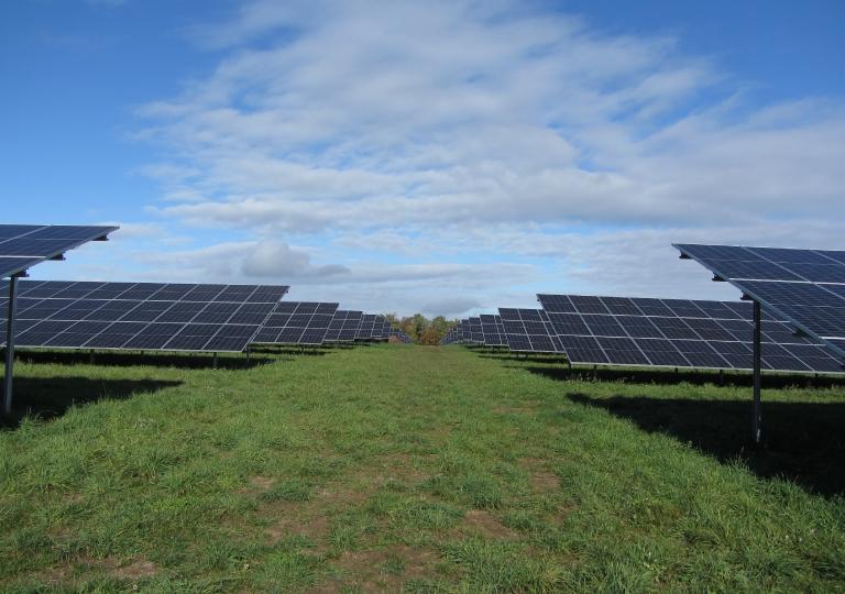 Solarpark Bonnhof-West